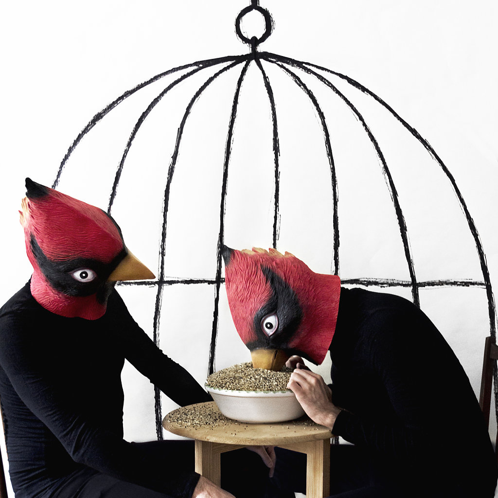 """House for Birds"""