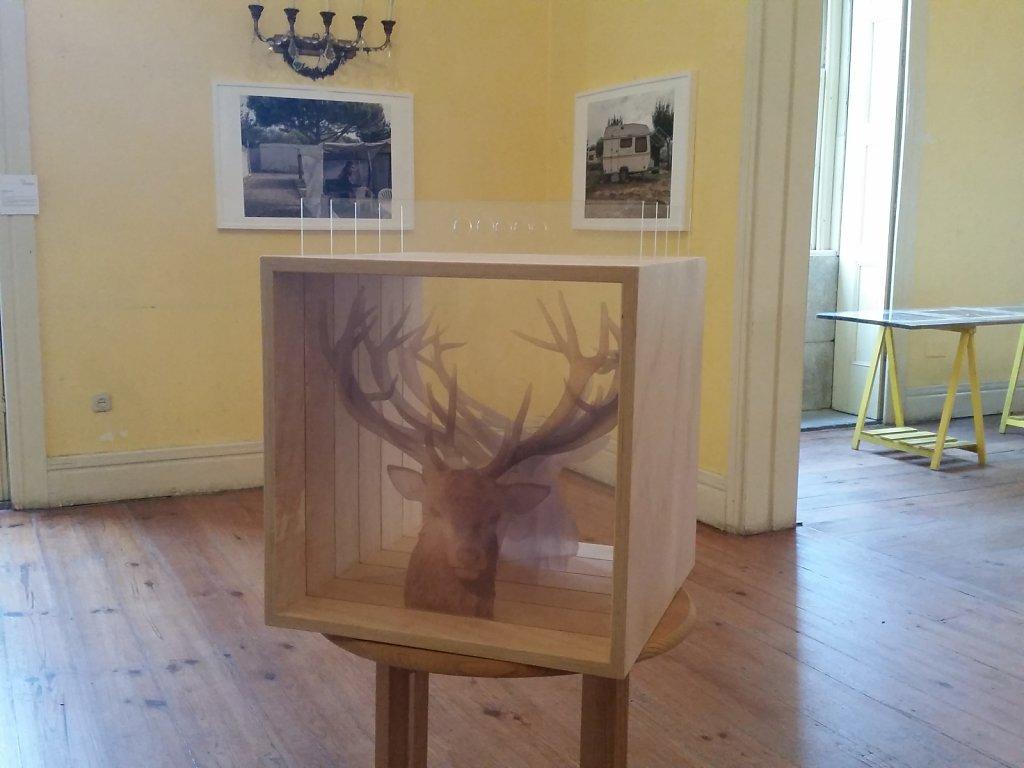 """Dead/Alive"" part of ""21(impossibilidades)"" : Collective exhibition - Palacete Pinto Leite, Porto, Portugal"